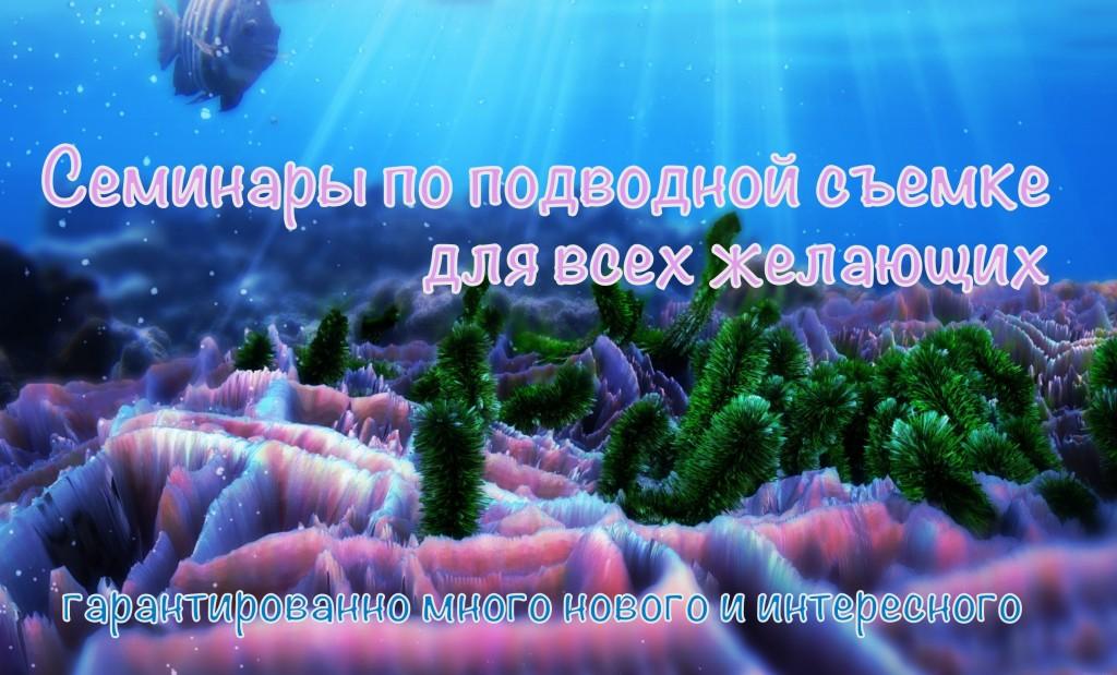 Подводная съемка банер